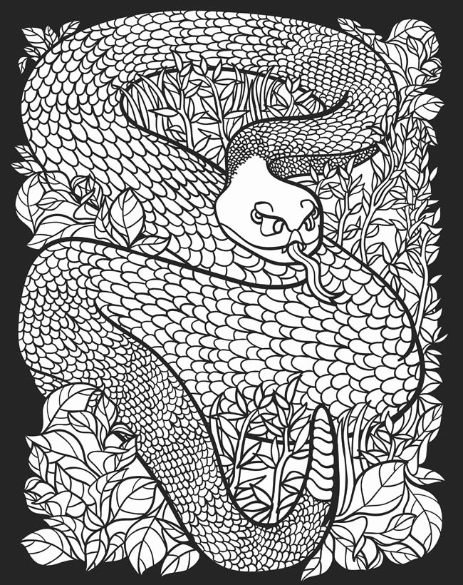 Difficult Coloring Pages Of Animals Awesome Childhood Education Nocturnal Animals Coloring Pages Free In 2020 Kleurplaten Dieren Tekenen Dieren