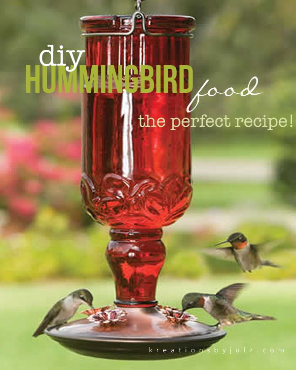 Diy Hummingbird Food Recipe