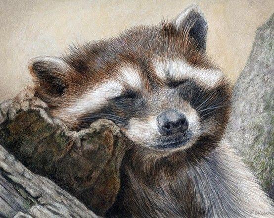Pat Erickson Watercolor and Prismacolor pencils