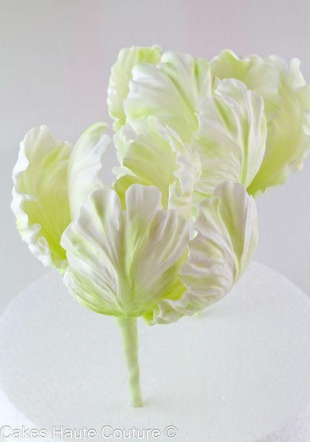 Sugar Parrot tulip / tulipanes de azúcar by Patricia Arribálzaga www.cakeshautecouture.com