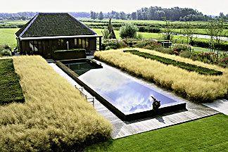 piet+oudolf+piet+boon | piet boon garden piet oudolf designer photo nicola browne 2001 the ...