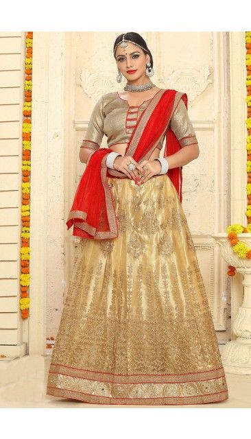 Stylish Beige Net Lehenga With Brocade Choli - DMV11333