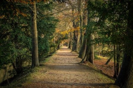 10 Unusual Things To Do In Oxford, England