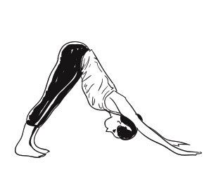 sun salutation 101 your basic guide to learn the ageold