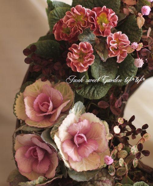 tef*tef*寄せ植えリース<BR>2014 * no.54 *<BR><BR>『葉牡丹×プリムラ・チョコ』