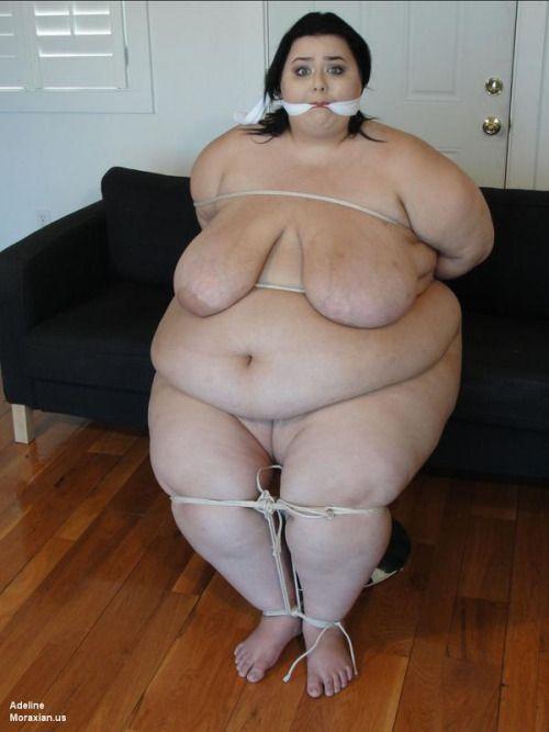 sexy girl suck cock gif