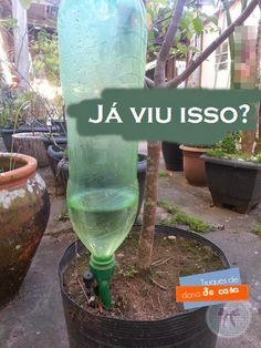 Gotejador para vasos de plantas - muito útil! | Dona Perfeitinha - Blog de dicas domésticas, reflexões para a vida & receitas