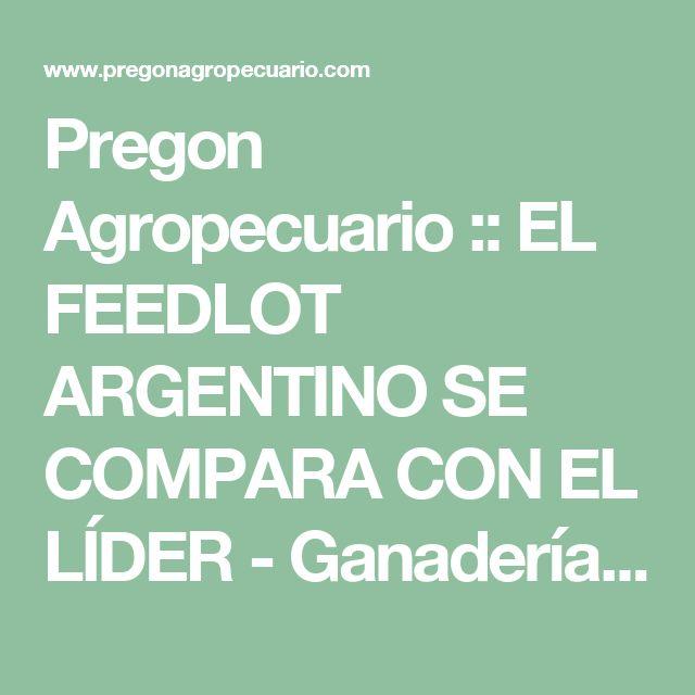 Pregon Agropecuario :: EL FEEDLOT ARGENTINO SE COMPARA CON EL LÍDER - Ganadería Bovina - Empresas y Explotaciones