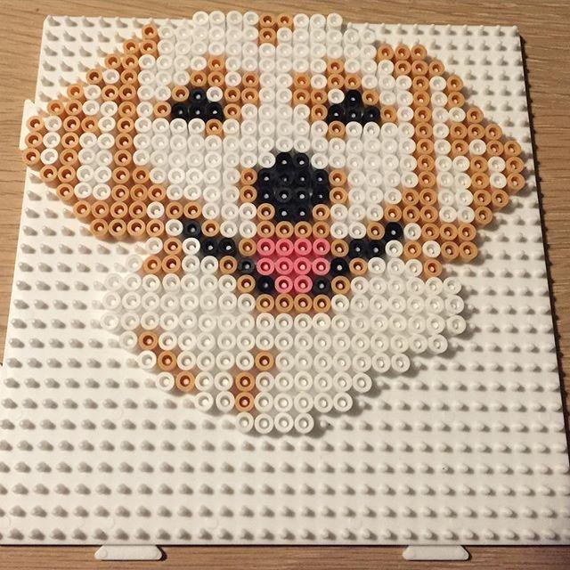 Dog hama beads by perlepige