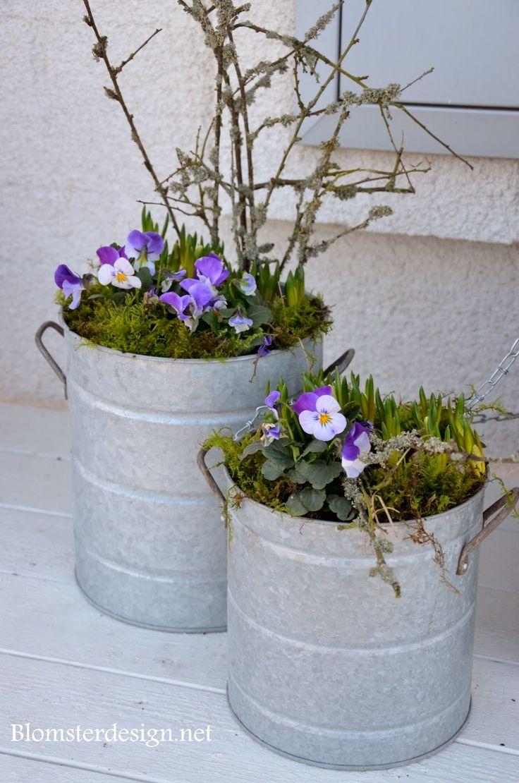 .jardinieres de printemps
