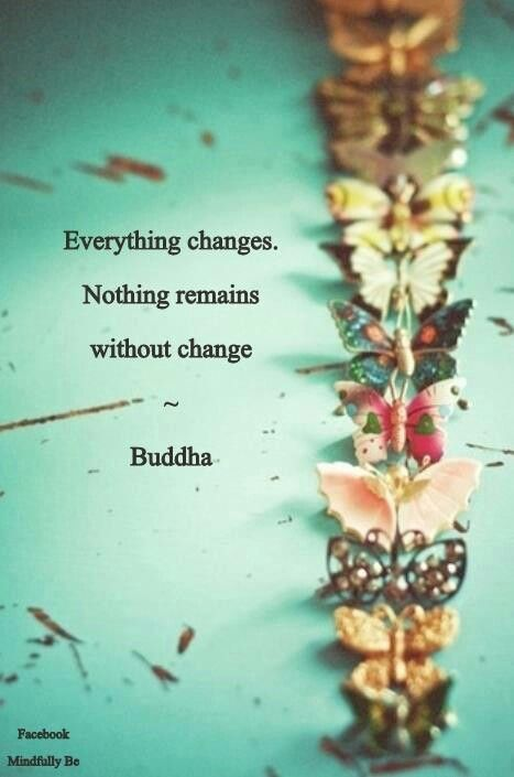 Everything * Your Daily Brain Vitamin * The only constant in life is change. #GetToChanging #YouDoYou #motivation #inspiration #quotes #quoteoftheday #DBV #DailyBrainVitamin