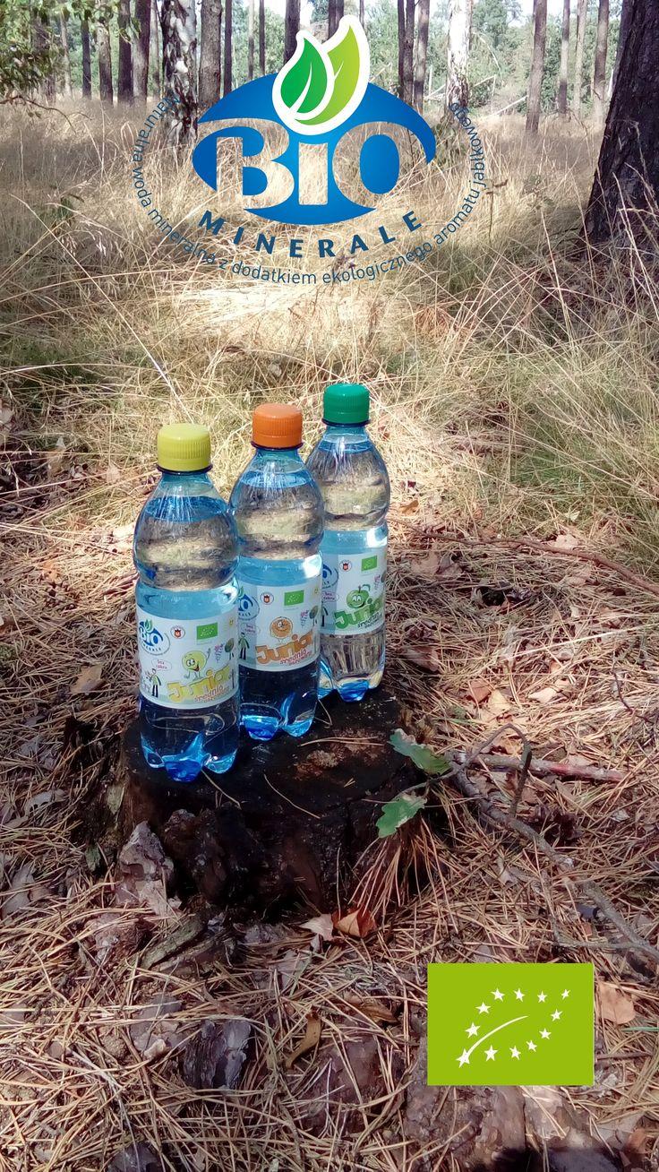 BioMinerale JUNIOR Woda mineralna o smaku cytrynowym, jabłkowym lub pomarańczowym *Bez cukru, substancji słodzących i Bez konserwantów z certyfikatem BIO. Do nabycia w ogólnopolskiej sieci NETTO. http://www.netto.pl