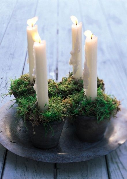 Moss in pot as candle holder