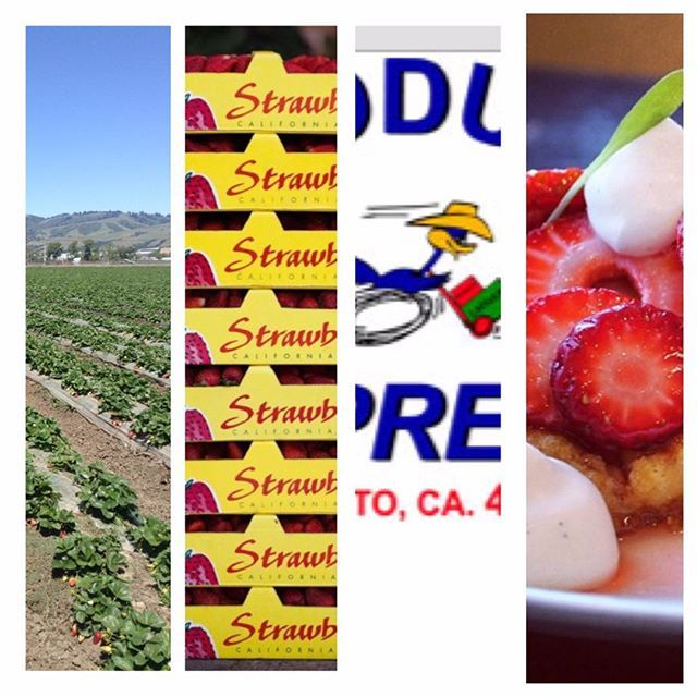 📡🍓😊🍓 New shipment delivered to Produce Express!!! Call now to receive your 12lb box of Farmer's Market Strawberries 📞 916-446-8918 😘🍓 Thank you for supporting @farmersmarket_produce #strawberries #watsonville #salad #brunch #frenchtoast #sacramento #caligrown #chef #pastrychef  #visitcalifornia #dessert #cake #tart #brownsugar #repost #margarita #happyhour #fresh #lime #salt #doughnuts #icecream #waffles  #bartenders #cake @sacfarm2fork @produceexpress 🍓 #montereylocals…