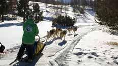 Sestriere Ski | Sestriere Ski Resort | Crystal Ski