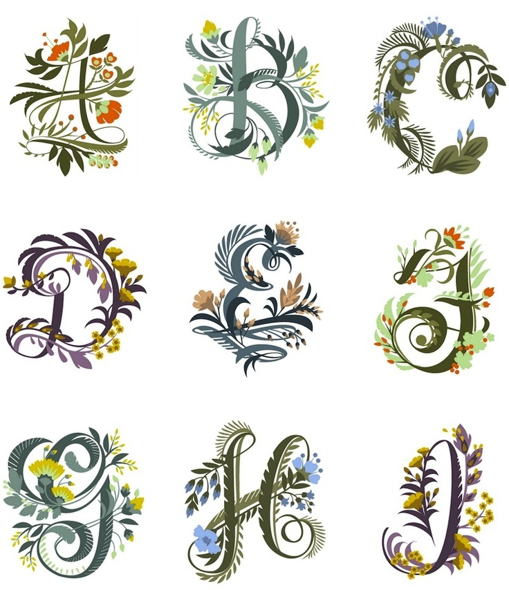Floral fonts paper goods calligraphy pinterest