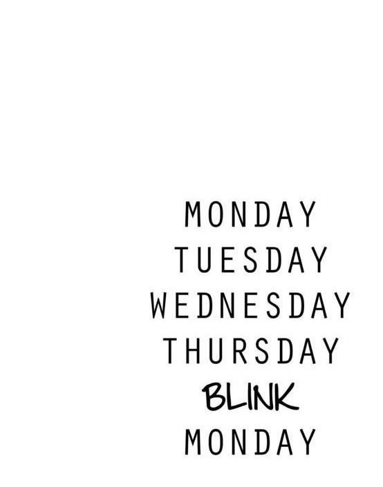 Monday, Tuesday, Wednesday, Thursday, blink, Monday.