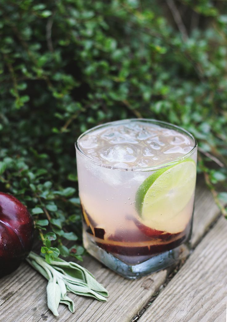 Plum Sage Fizz Mocktail