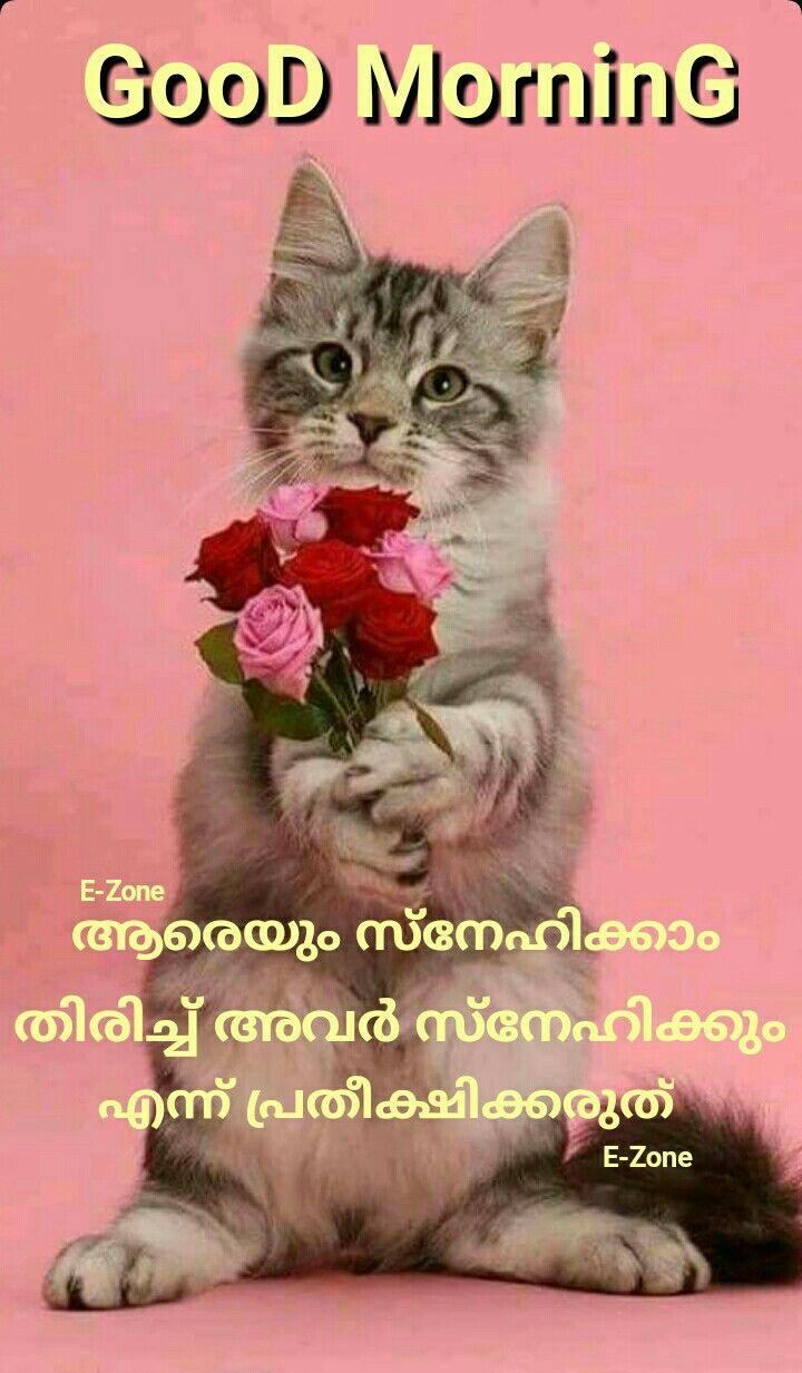 Pin By Eron On Good Morning Malayalam Good Morning Oly Best
