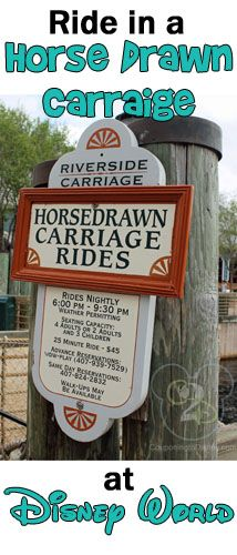 If you are staying at Port Orleans Riverside at Walt Disney World, you can ride in a horse drawn carriage!