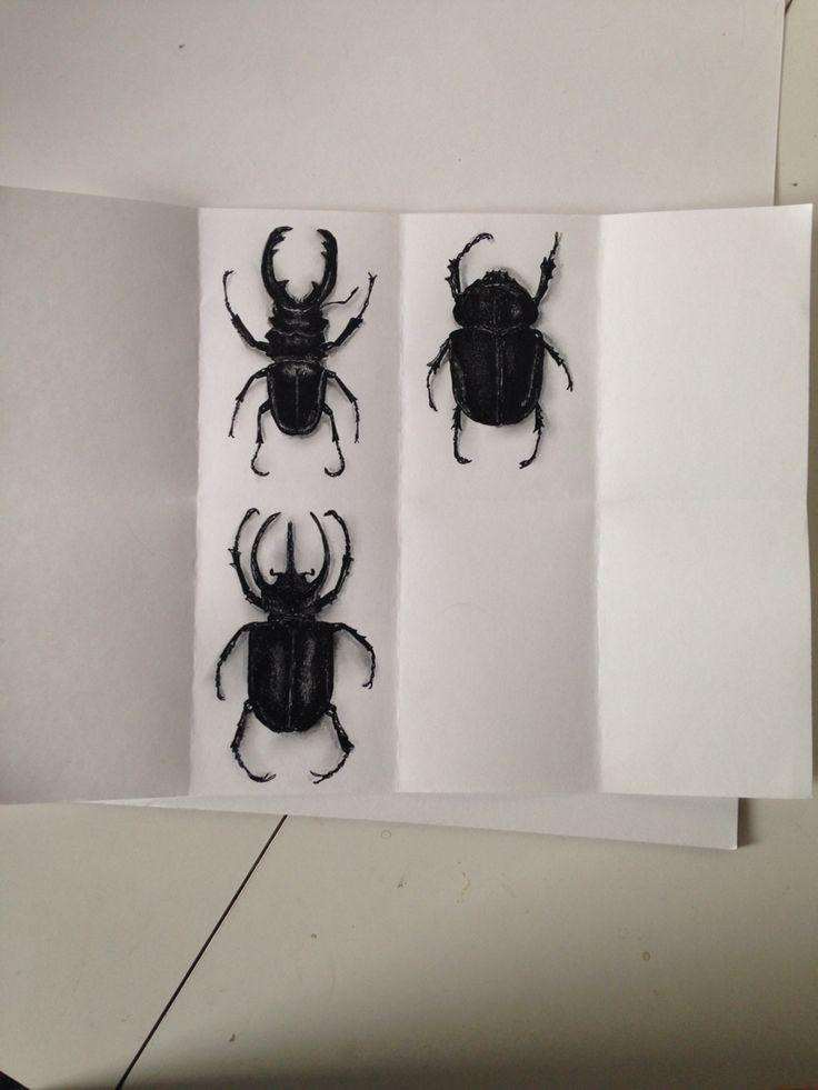 #dibujo #art #drawing #escarabajos