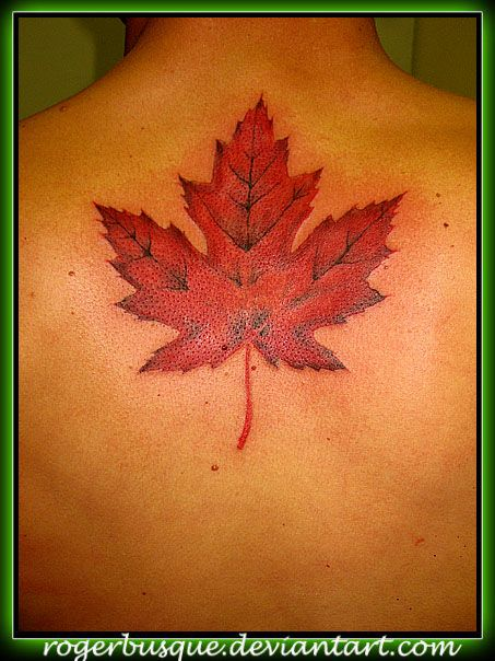 maple leaf tattoos - Google Search