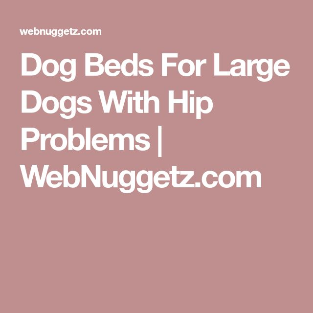 Dog Beds For Large Dogs With Hip Problems | WebNuggetz.com