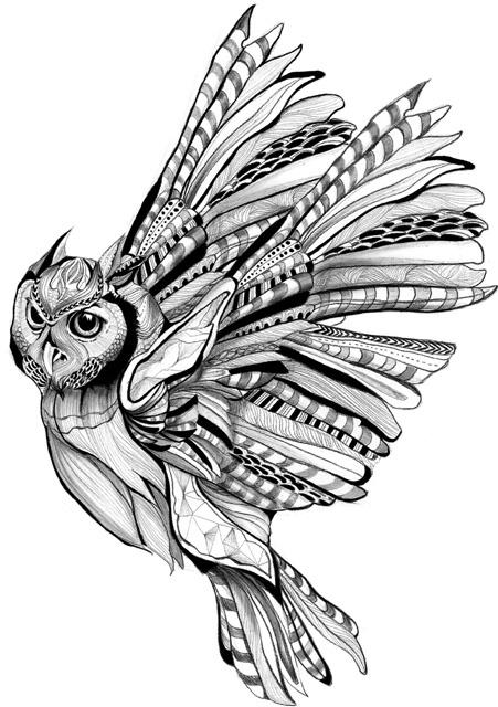 owl b+w illustration art