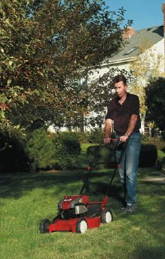 Last-Minute Lawn Care  Follow these five simple steps to prepare your lawn for winter.