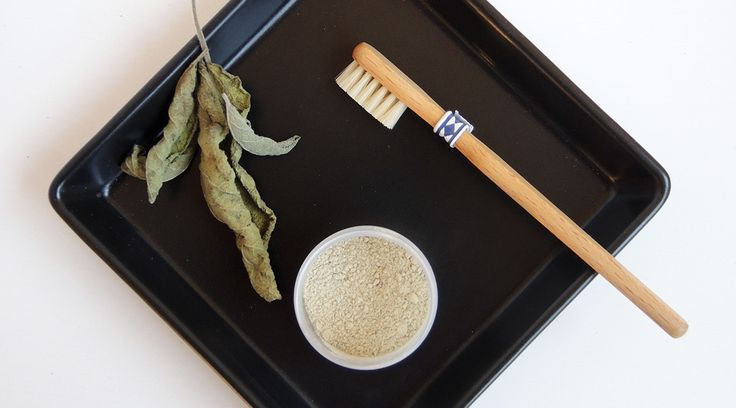 Kapuzinerkresse ist ein natürliches Antibiotikum, das jeder verwenden kann. Wie ihr es zu einer Tinktur herstellt, erfahrt ihr hier.
