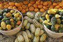 Squash at a farmer's market - Bill Boch/Stockbyte/Getty Images