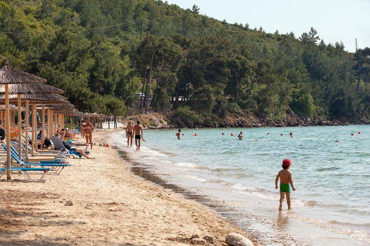Skala Rachonissa on paljon rantoja ja uimapoukamia, joissa on usein oma taverna ja ympäristön pinjapuut tarjoavat varjoa, jos aurinko porottaa liian voimakkaasti. #Thassos #Kreikka #Greece #travel #beach #matka #loma #tjäreborg #letsgo #parhaatviikot