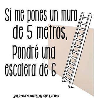Si me pones un muro de 5 metros, pondré una escalera de 6. Logra todas las metas que te propones.