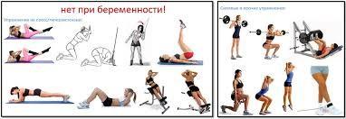 Картинки по запросу первый триместр фитнес