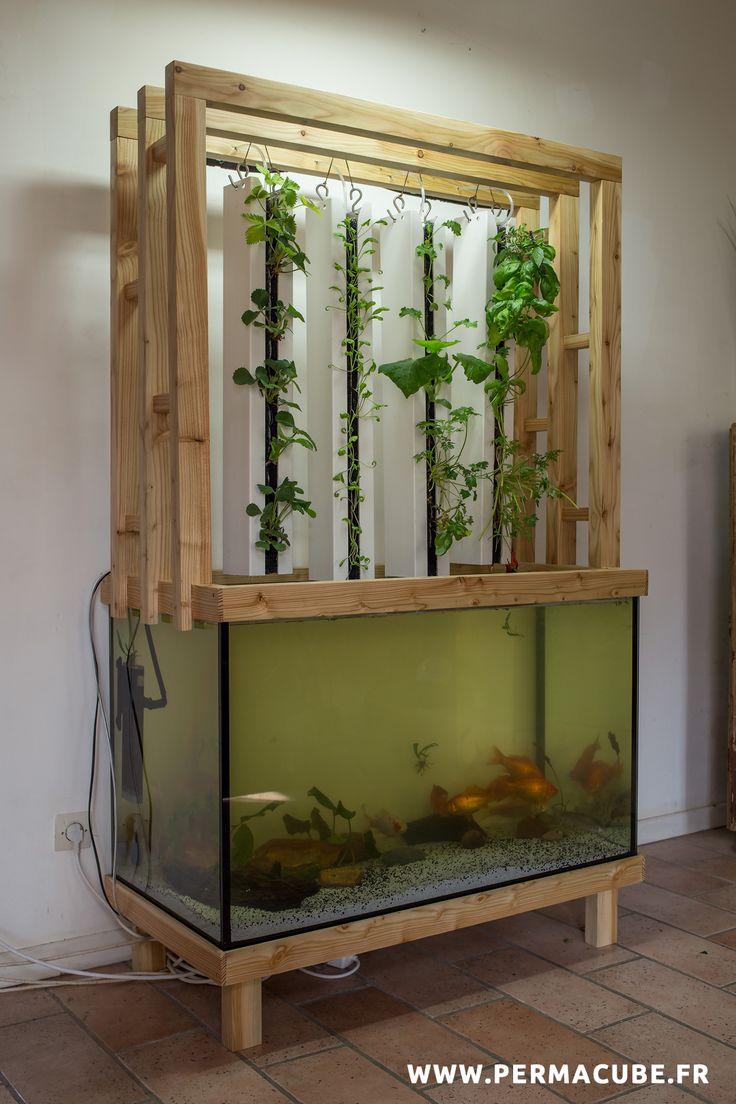 91 best images about aquarium aquaponie on pinterest for Jardin hydroponique