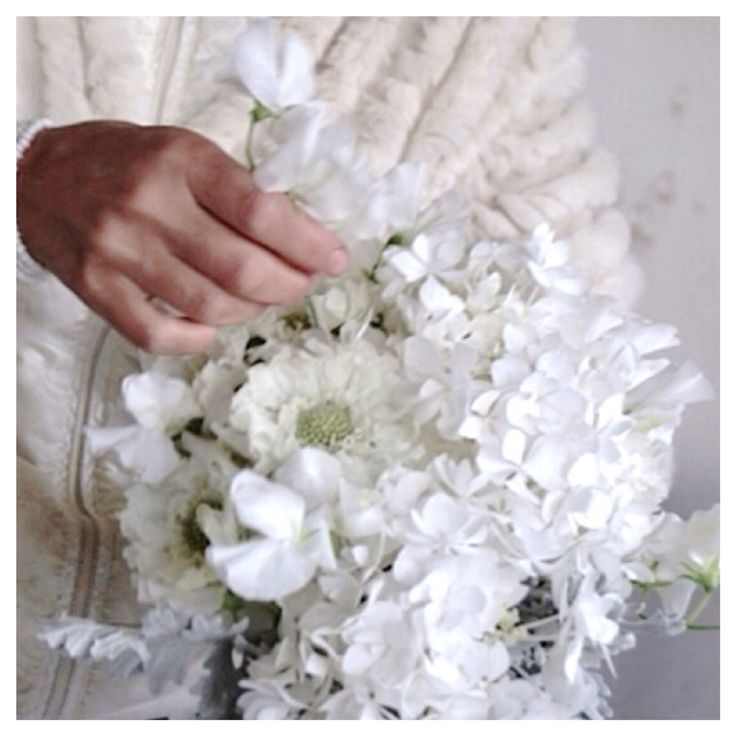 Flowers, Mina Milanda