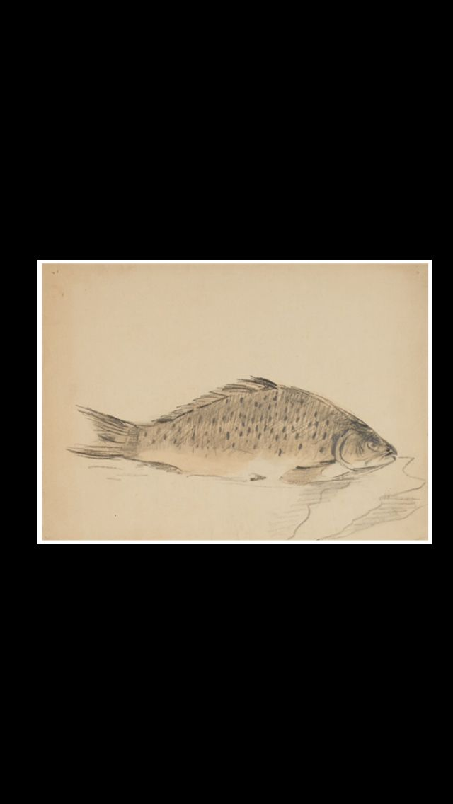"Fillipo de Pisis - "" Poisson "", 1926 - Ink and watercolor on paper - 23,5 x 31,5 cm"