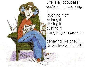 Maxine - Life
