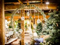 Kerstshow 2016 - Fotoalbums - Groencentrum Witmarsum, het tuincentrum in Friesland