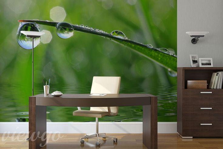 Kropla-deszczu-do-biura-fototapety