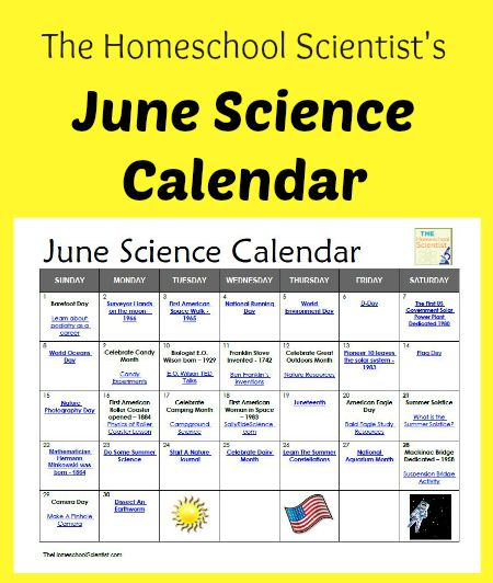 Calendar Ideas For June : Free june science calendar thehomeschoolscientist