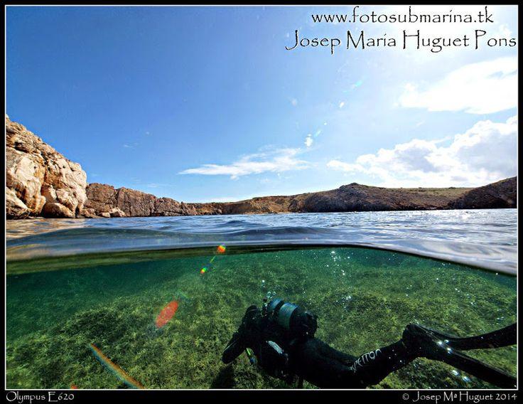 Fotos Submarinas: Fotos del mes d'octubre.