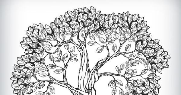 Pin Oleh Renata Sibarani Di Pohon Menggambar Pohon Pohon Gambar