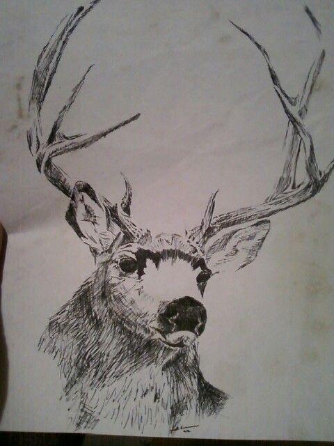 Mule deer 1988