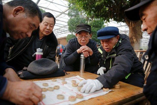 Cittadini cinesi alle prese con giochi da tavolo all'interno della serra