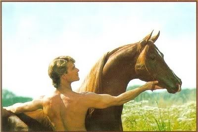 Patrick Swayze and his horse, Tammen.: Patrick Swayze, Famous Horse, Beautiful, Arabian Stallions, Favorite, Arabian Horses