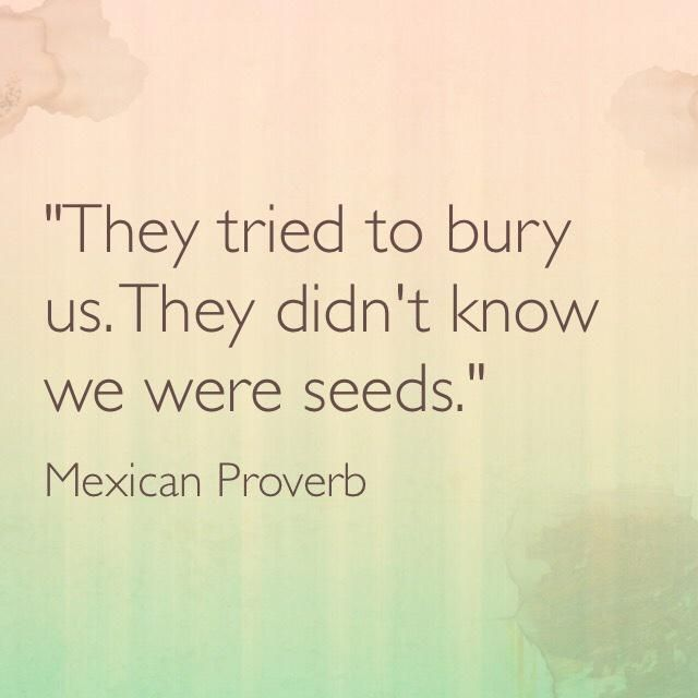 they tried to bury us. they didn't know we were seeds