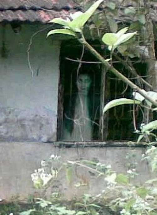 .Ghosts Chicks, Ghosts Photos, Halloween Haunted, Crazy Ghosts, Creepy Things, Real Ghosts, Haunted Places, Dark Side, Ghosts Stands