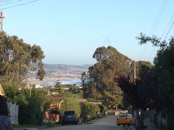 Las Cruces, Chile. #nofilterneeded