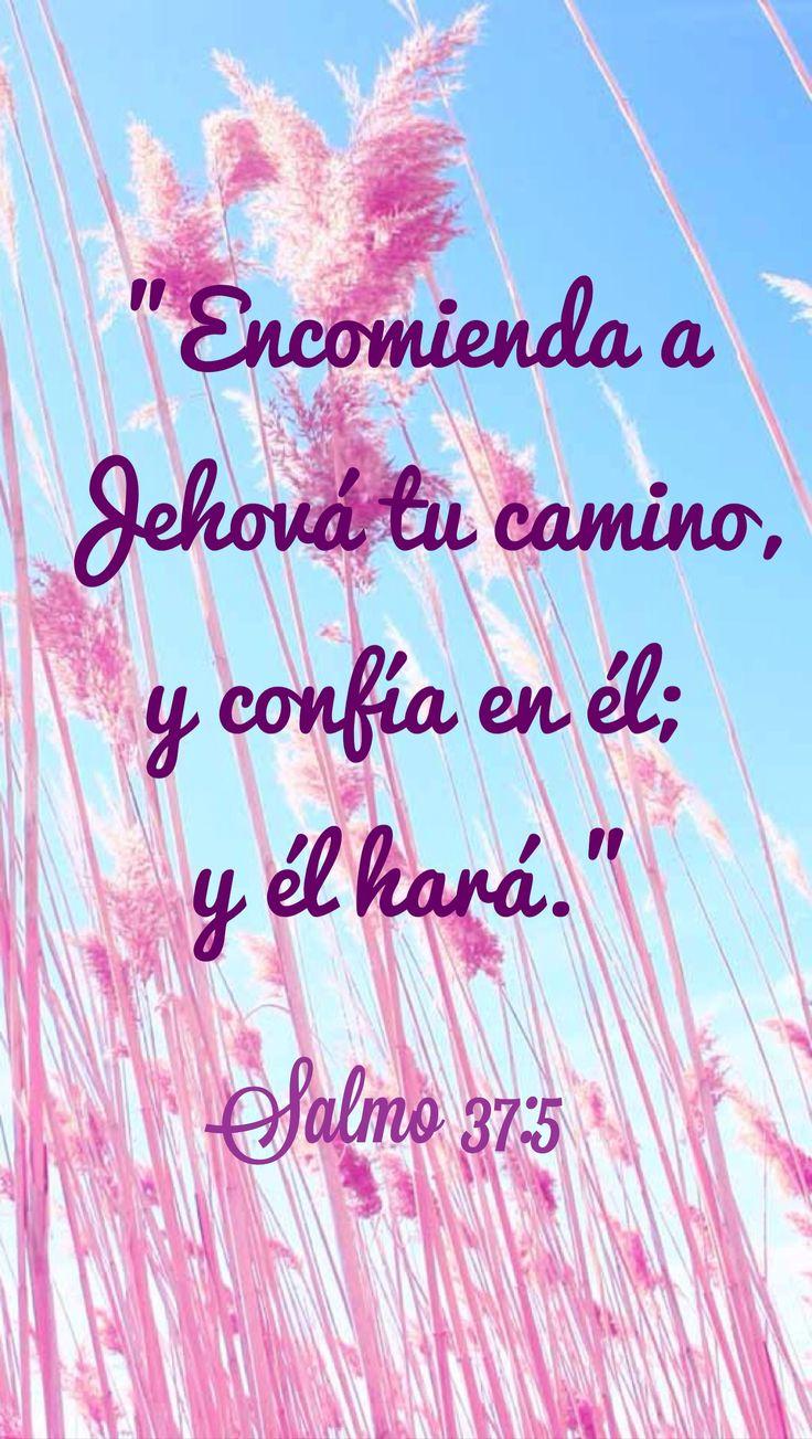 Bible│Versículos - #Versiculos - #Bible - #Dios                                                                                                                                                                                 Más